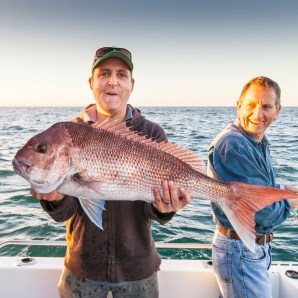 Snapper fest in the gulf with Matty