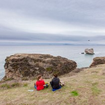 A day hiking to the coast in Point Reyes National Seashore followed by oysters at the Marshall Store