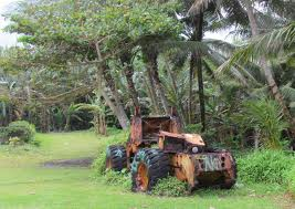 tractorPalms