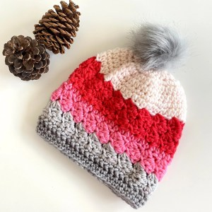 Winter Hat for Women