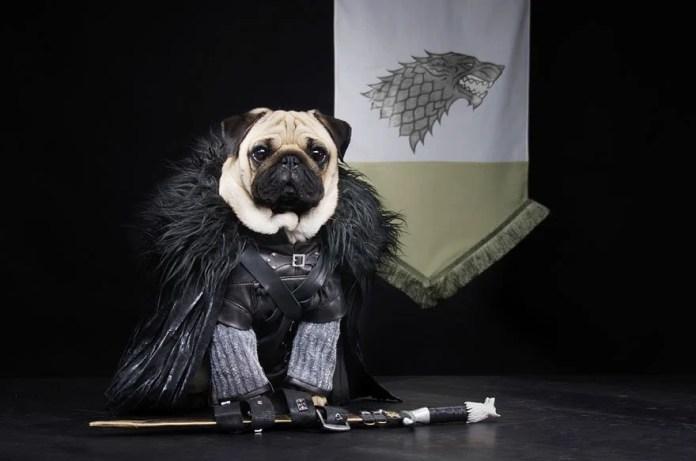 Vamers - Geekosphere - Mash-Up - The Pugs of Westeros star in A Game of Bones Dinner is Coming - Jon Snow