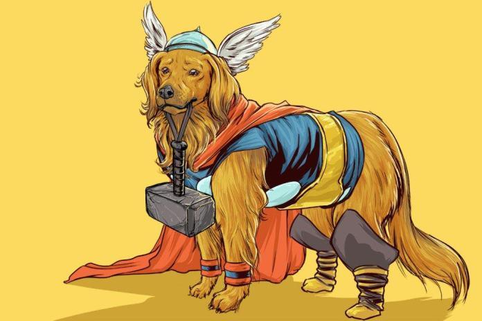 Vamers - Artistry - Fandom - Artist Josh Lynch Imagines Dogs as Superheroes from the Marvel Universe - Thor