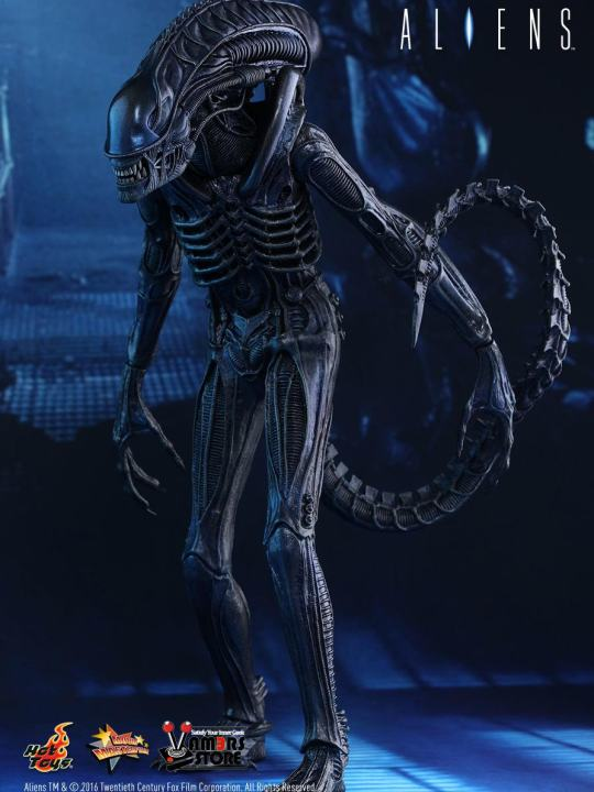 Vamers Store - Hot Toys - MMS354 - Aliens - Alien Warrior - 01