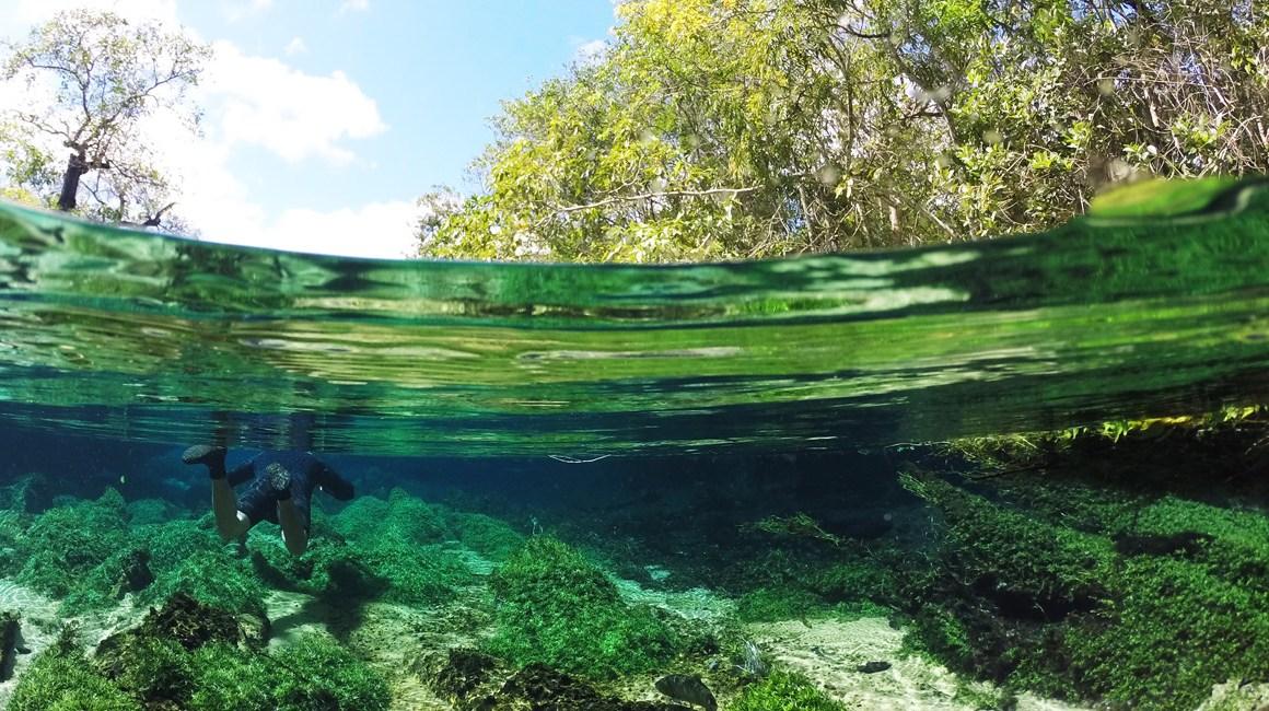 subaquática em bonito