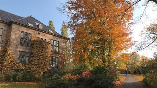 Jardim Botânico Oslo