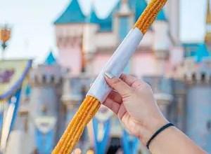 Churros de Disneyland postres