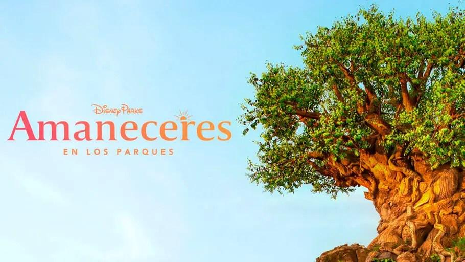 Series y Películas en Disney+ Para Disminuir la Depresión Post Disney
