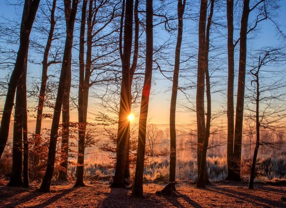 Gerundio en español. Lo bueno del invierno, vamosaudioblog.com