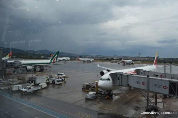 ¿Cuantas aerolíneas y alianzas hay ahí?