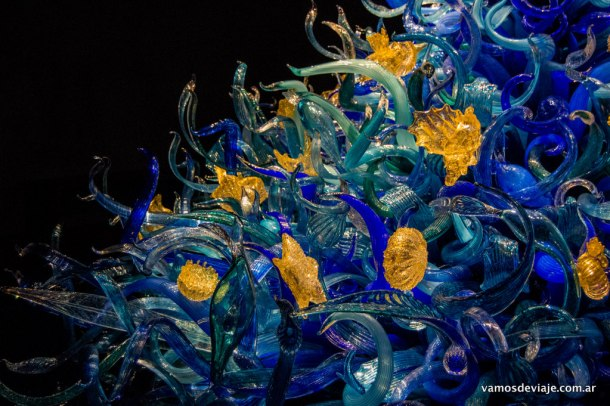 Sealife Room - Chihuly Garden and Glass