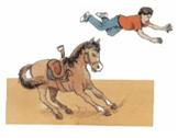 Cavaleiro impulsionado para frente. Primeira lei de Newton