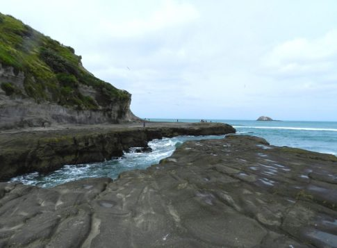 Muriwai - Auckland - NZ