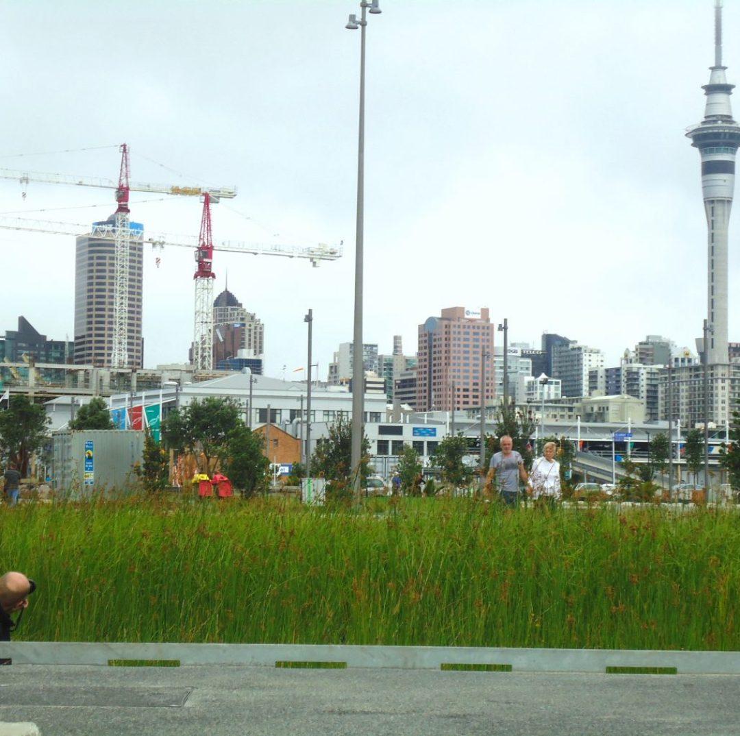 Intercâmbio para a Nova Zelândia