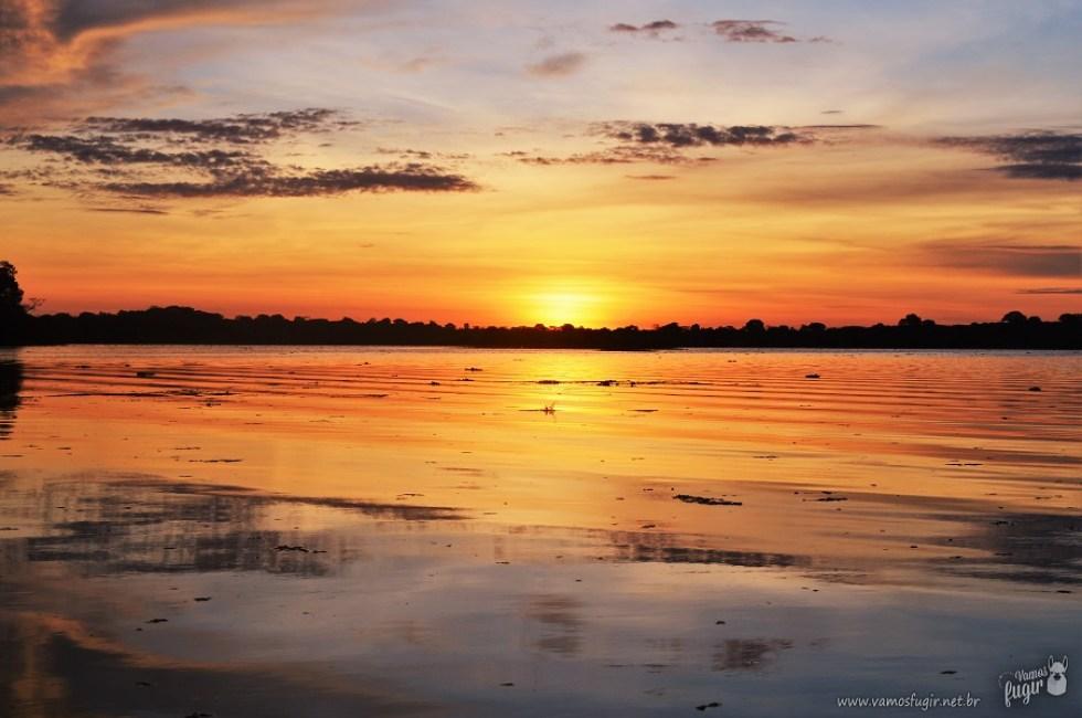 Nascer do Sol floresta amazônica