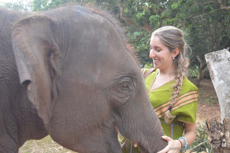 elefantes-em-chiang-mai-patara-elephant-park-8