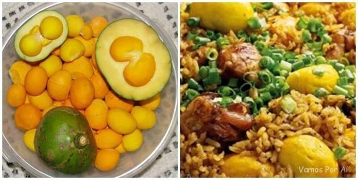 Tudo o que Você Precisa Saber Sobre a Culinária Goiana 2