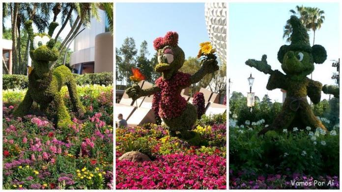 Epcot Flower & Garden