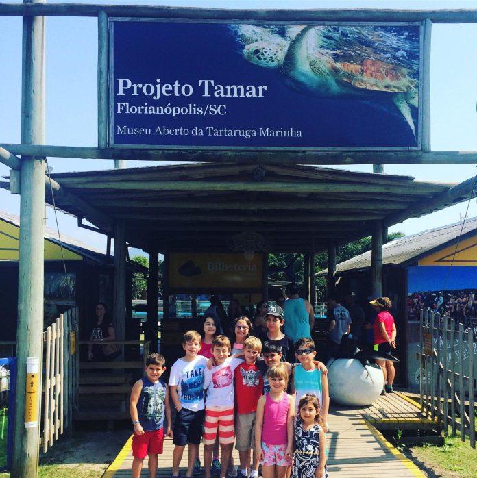 Roteiro em Florianópolis: Projeto Tamar em Florianópolis