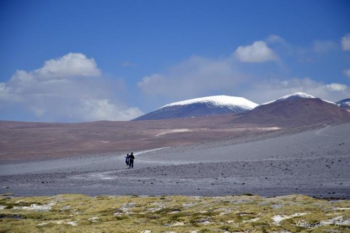 Laguna Colorada: Passeio de 1 dia Partindo de San Pedro do Atacama
