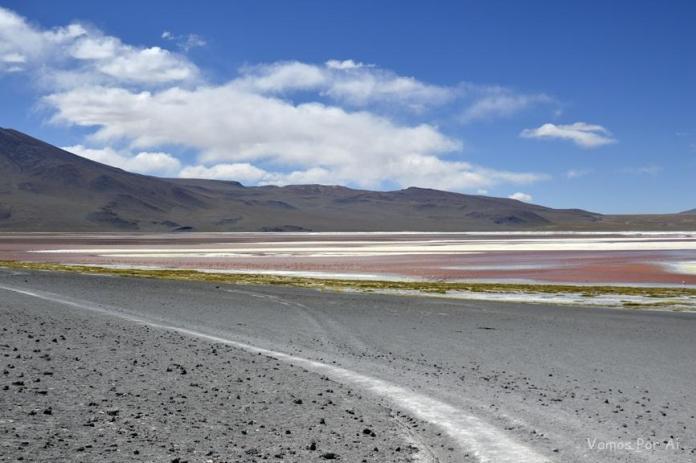 Passeio de 1 dia até a Laguna Colorada na Bolívia