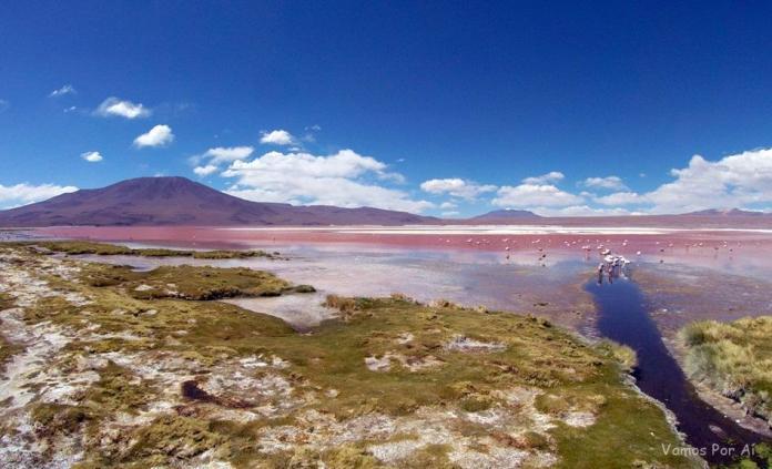 como chegar a Laguna Colorada na Bolivia