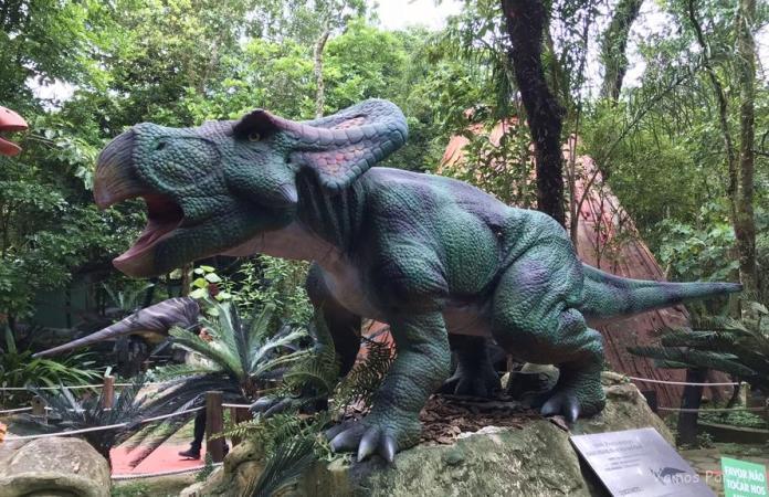 Protoceratops no Protoceratops