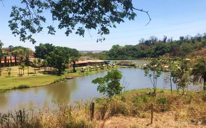 Arca Parque: Natureza e Diversão Pertinho de Goiânia