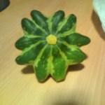星形の野菜(ズッキーニの一種)