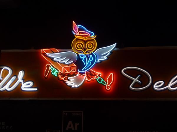 这猫头鹰挺可爱的。