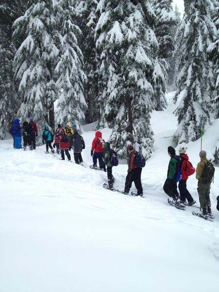 穿行于林海雪原。