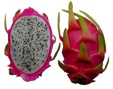 Pitaya, of dragon fruit