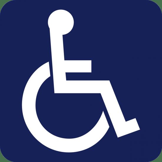 Terri January Week 1 - IMG - Disability