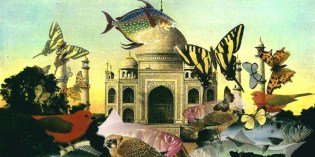 cropped-cropped-dream-of-the-taj-mahal-small.jpg