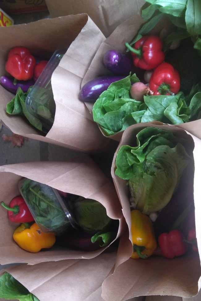 An overhead image of fresh produce in paper bags