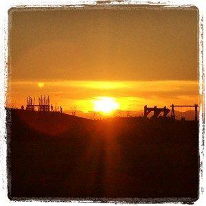 terranova_sunset