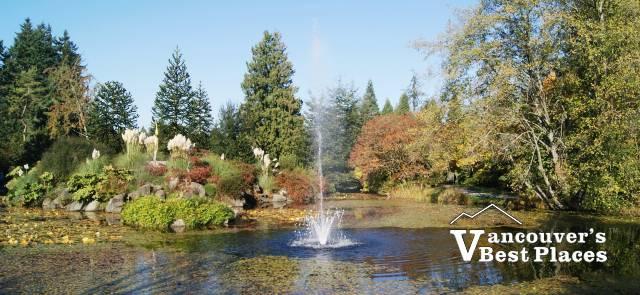 Fountain Pond at VanDusen Garden