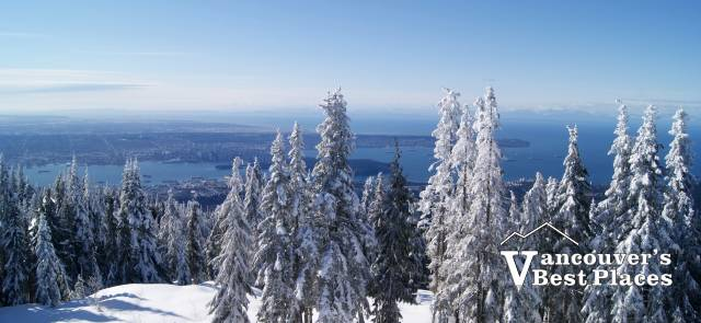 View from Grouse Mountain Restaurants