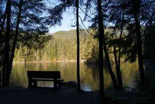 View from Bench at Rice Lake