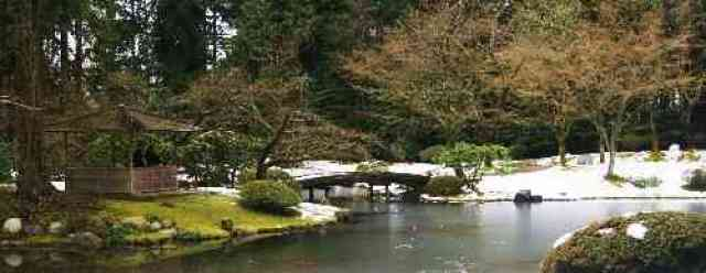 Winter at Nitobe Garden