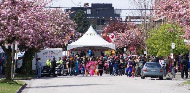 Blossoms at Punjabi Market