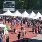Festival Crowds at Swangard Stadium