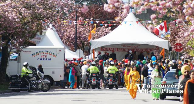 Side Street Blossoms at Vaisakhi