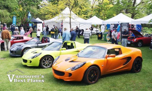 Lotus Car Display