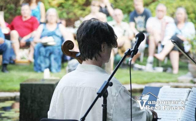 String Musician at Glades Garden