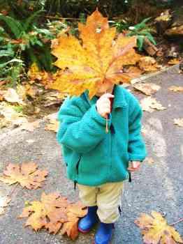Boy with Autumn Leaf
