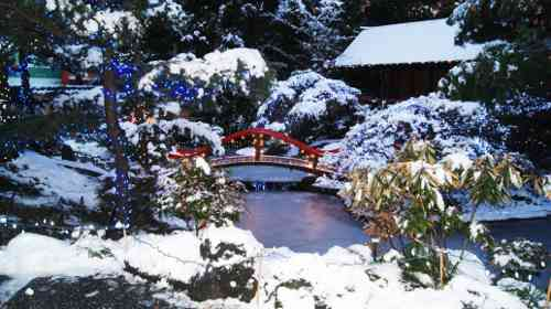 Park and Tilford Gardens in Snow