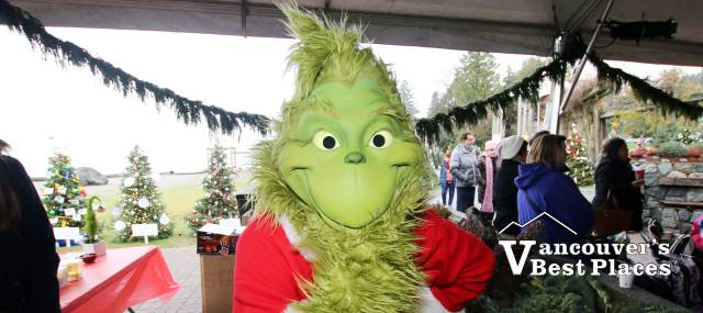 The Grinch at Dundarave