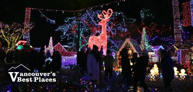 Stanley Park Bright Nights