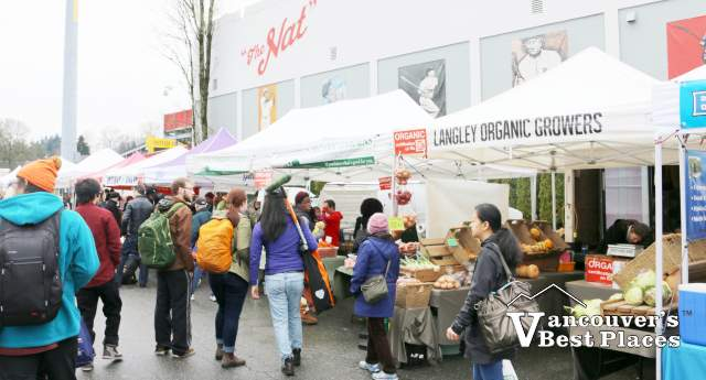 Riley Park Market Shoppers by Nat Bailey Stadium
