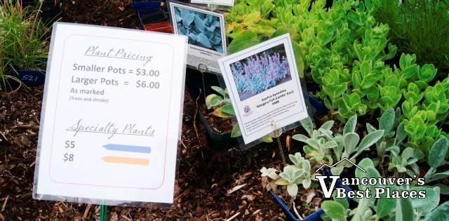 Darts Hill Plant Sale